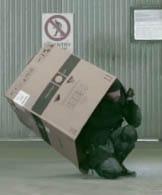 boxhound